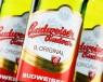 Bia Séc Budweiser Budvar lập kỷ lục xuất khẩu